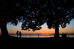 Sonnenuntergang (hilarius.at) Tags: sonnenuntergang bregenz bodensee schattenriss