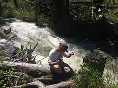 Citizen scientist volunteer Sydney Parkhill (USDAgov) Tags: water fs forestry montana yellowstonenationalpark conservationeducation citizenscience custergallatinnationalforest adventurersandscientistsforconservation