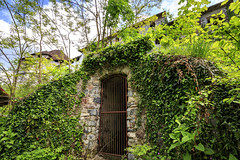 160516_145158_CB_9194 (aud.watson) Tags: europe slovenia gradturjak castle tree treetrunk leaves door plantcreeper turjakcastle 13thcentury