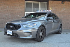 Toronto Police Service - 3141 (Phil Drinkwater) Tags: toronto police service ontario canada cops sheriff trooper stealth ford taurus 2016 grey gray law enforcement the six 416 detective constable sergeant chief deputy provincial opp rcmp royal canadian mounted