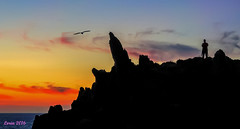 Desde Cabo Home (Cangas) (loriagaon) Tags: sonydscrx10iii sonyrx10lll macro galicia pontevedra espaa loriagaon loria naturaleza nature paisajes landscapes scenery puestadesol sunset nocturnas night rx10lll