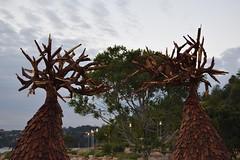 Wooden Sculptures (Keith Mac Uidhir  (Thanks for 3.5m views)) Tags: sydney australia australian australi  austrlie australien  australie    ausztrlia austrlia   avustralya c   sdney       sidney