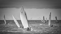 W&FYC_PIER_RACE_2016--10 (Stewart's 2013/365) Tags: walton frinton yacht club dingy sailing 2016 backwaters stone point pier