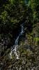 Gorge Creek and Falls-001 (RandomConnections) Tags: cascades northerncascades skagitcounty skagitriver washington rockport unitedstates us