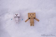 "Board Angels (darktiger) Tags: snow cold japanese robot cool interesting funny manga suit cardboard figure yotsuba danbo revoltech danboard cardbo ""actionfigure"" ""stanfordmoore"""