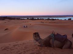 Morocco-Sunset at desert3