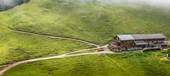 K_018_Brenbadalm im Karwendelgebirge (wenzelfickert) Tags: people austria tirol sterreich htte meadow wiese menschen lodge trail alm alpen wanderweg karwendelgebirge brenbadalm