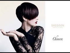 .  -    Vidal Sassoon. 2005. (daycattocgiare) Tags: vidal sassoon    2005