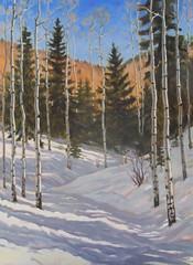 Aspen in Snow   40 x 30