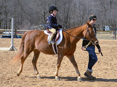 2015-03-22 (67) horse show Upper Marlboro (JLeeFleenor) Tags: girls horses woman caballo cheval photography d