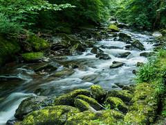 Walk Lynton to Watersmeet E7120258_14 (tony.rummery) Tags: longexposure england water rock river rocks stream unitedkingdom somerset olympus gb omd watersmeet lynton em10 mft microfourthirds northdevondistrict