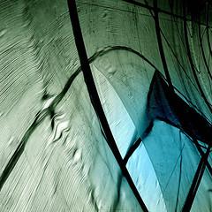 nursery series.jpg. (losy) Tags: nursery roof plastic losyphotography greenhouse