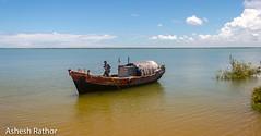 Boatman with his boat (asheshr) Tags: river landscape boat fisherman boating vehicle fishingboat orissa boatman boatride cominghome beautifullandscape incredibleindia odisha boatmanwithhisboat hukitola