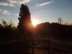 Pr do sol - Sunset (Felippe Frigo) Tags: por do sol sunset padre gaspar tiradentes minas gerais brazil brasil landscape paisagens escultura ceu mineiros e mineiras