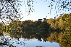 Fishing Pool (StuStokie) Tags: plants weather landscape water trees fishing lakes england outdoor serene