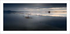 Paisatge en blaus / Landscape in blue (ximo rosell) Tags: light color luz water valencia nikon horizon paisaje ricefield aigua horizonte llum arrozal marjal arrossars ximorosell