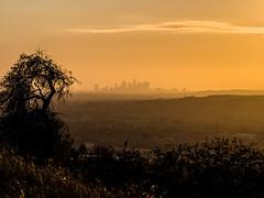 Sunset Los Angeles (nexotal) Tags: losangeles california sunset haze sillouette