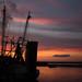 Shrimp Boat Sunset on Apalachicola Bay