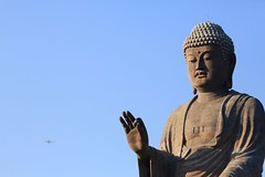 big buddha and the little jet plane (peet-astn) Tags: japan shiku daibutsu outdoor architecture monument tokyo buddha aeroplane hand