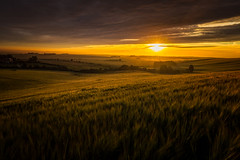 Unveiled. (Vemsteroo) Tags: 2470mm canon sunrise downs nofilters northwessexdowns oxford oxfordshire rural wessex light morning dramatic england visitbritain visitengland agriculture landscape nature beautyinnature cloud summer green warm didcot glorious 5d mk iii rolling hills countryside