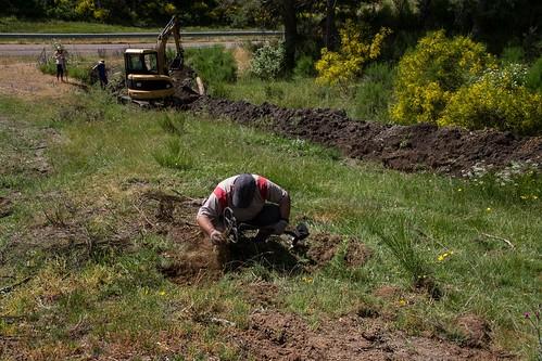 Exhumación en El Pando (León) (3)