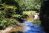 Bristol - Snuff Mills (Michele 'MIKEY' Schirru) Tags: cabot cabottower bristol ssgreatbritain snuffmills