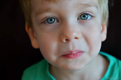 Who Me? (zacklayman) Tags: bokeh 50mm natural face cute big blond resting nose boy light oops uhoh blue lashes child candid sweet innocent eyes play love lips kid daddys beautiful hair