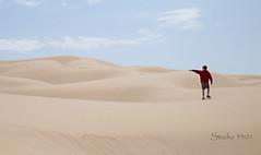 Boy point Sand Dune AZ 4059c PatriciaLam (Studio5301) Tags: sanddunes sand rabbit patricialam studio5301 sandandsky