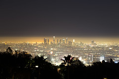 Goodnight Los Angeles. (Rares M. Dutu) Tags: hollywood losangeles la city losangelesskyline long exposure beautiful gorgeous landscape lights citylights sky trees palm lovely canon canon6d 24105