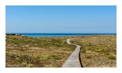 camino al mar [Explored] (Rafa Lorenzo) Tags: galicia miaterragalega paraso paradise