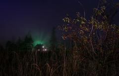 The Magic of Fog (ckohlman) Tags: fog house lightpaint foilage magical stars outdoor landscape night field britishcolumbia lowermainland trees sky berries canada