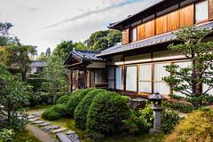Sokushuin, Subtemple of Tofukuji, Kyoto (Christian Kaden) Tags: autumn herbst jahreszeit moos moss natur nature pflanze pflanzen plant season sokushuin sokusoin sugigoke tempel temple tofukuji