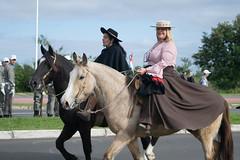 DSC_5197 (neyde zys) Tags: desfilefarroupilha gauchos indumentaria prendas tradicao