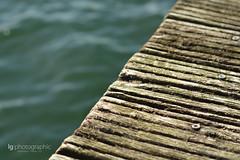 Wooden jetty (lg-photographic) Tags: wood sea harbor wooden spring nikon jetty baltic hafen holz ostsee fehmarn frühling burgstaaken holzsteg d5200