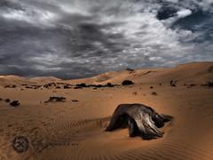 Desert Impressions: Dead vlei (Jan-Krux Photography) Tags: africa clouds landscape dead sand desert alt wolken olympus afrika impressions holz tot landschaft sesriem namibia baum sossusvlei em1 vlei duenen ewig dramatisch deadlake
