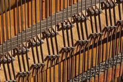 Old Piano (R Ness photos) Tags: minolta100mmmacro sonya7 acratechballhead unilocmajortripod sonylaea3