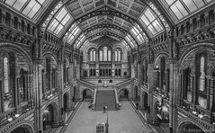 Natural History Museum, London. (Enrique Arevalo) Tags: uk travel england blackandwhite bw london history museum architecture photography natural naturalhistory enrique naturalhistorymuseum hdr arevalo architecturephotography saariysqualitypictures skancheli arevaloge enriquearevalo