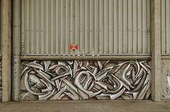Spazm (Re PiEd) Tags: white black graffiti noir spray blanc dely spazm smerg antistak