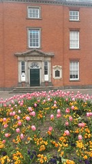 Long eaton town hall looking rather majestic and colourful with the signs of spring (thecitybus) Tags: flowers summer happy spring colours tulips bright derbyshire townhall majestic longeaton longeatontownhall