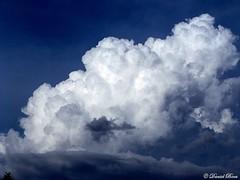 Convection (Daniel Boca) Tags: blue sunset cloud white colour colors june clouds evening droplets spring colorful colours darkness atmosphere cumulus cauliflower convection vapors cumulonimbus