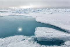 Seaice can be really beautiful (Hkon Kjllmoen, Norway) Tags: 2016 outdoor ice seaice snow svalbard