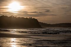M1140378.jpg (meerecinaus) Tags: longreef beach