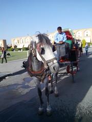 IMG_20150419_180519 (Sasha India) Tags: iran irn esfahan isfahan