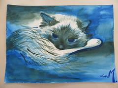 Chat bleu (mmarple62) Tags: blue water pencil cat watercolor chat eau drawing aquarelle dessin bleu pinceaux