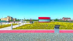 Cedar Rapids Library Green Roof (ken mccown) Tags: architecture greenroof cedarrapids cedarrapidspubliclibrary opnarchitects