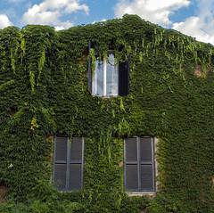 Sognando... (M.a.r.t.Y) Tags: verde finestre cielo nuvole travel explore foglie edera