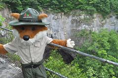 Parker the Fox (vastateparksstaff) Tags: railroad day tunnel lovers fox leap parker