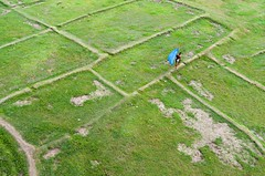 Going back to home! (ashik mahmud 1847) Tags: bangladesh d5100 nikkor green line people blue man rectangle