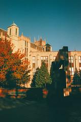 University of Washington (Tristan Hasseler) Tags: film alpha analog agfa artistic art a65 abstract washington pnw university uw huskies vsco canon av1 grain