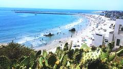 #corona del mar (romypuli) Tags: coronadelmar california oceano pacifico note4 nopal